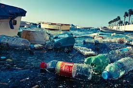 """""""Par où commence-t-on pour sauver la planète? 1/2 Moins détruire """" par Philippe Cahen"""