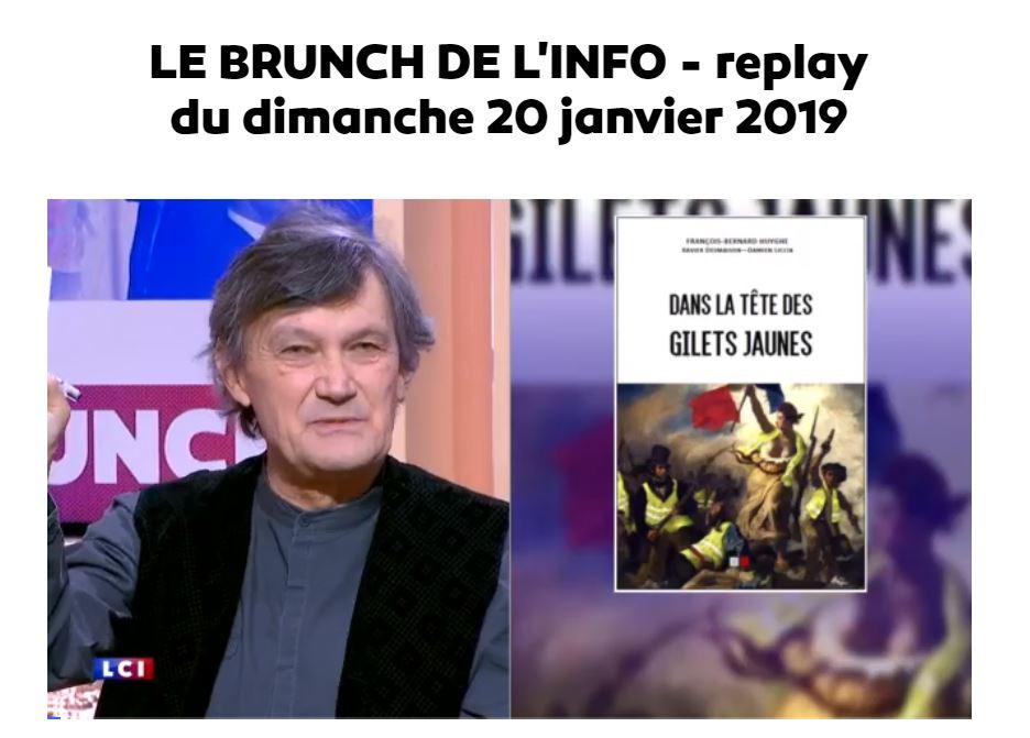 Dans la tête des gilets jaunes ; François Bernard Huyghe sur LCI